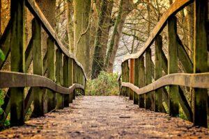 betydningen af drømme om broer - drømmetydning bro som drømmesymbol